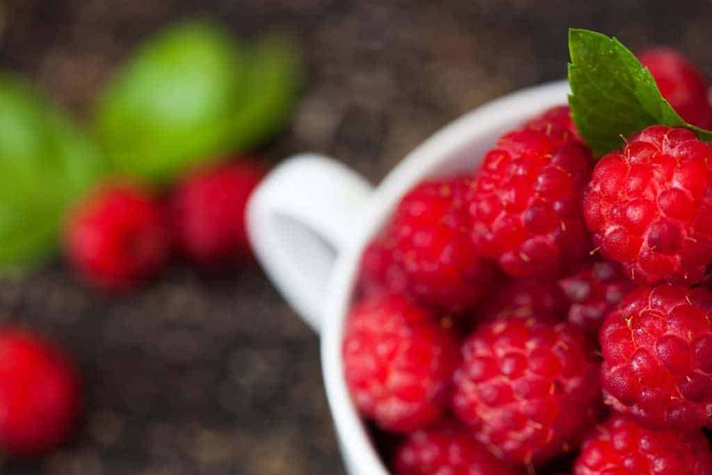 Maliny w diecie cukrzyka
